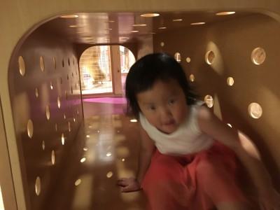 国立科学博物館 【親と子のたんけんひろば★コンパス】整理券が変わる!!