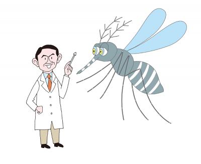 蚊が発生しやすい場所は?夏の天敵・蚊を徹底解剖