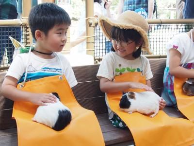 動物も沢山!一日遊べる海の中道海浜公園へ!