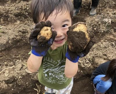 板橋区親子でジャガイモ掘り体験当選☆参加してきました!