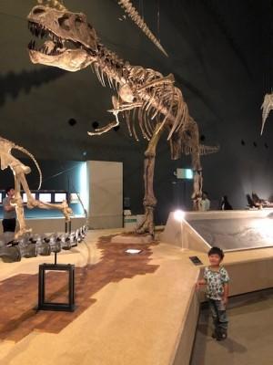 恐竜好き男の子も女の子も興味深々!『生命の星・地球博物館』