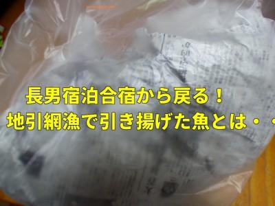 【宿泊合宿】長男が地引網漁でゲットした魚とは??