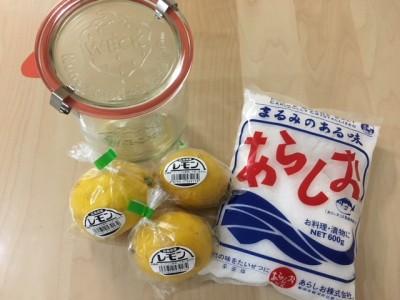 securedownload塩レモン材料