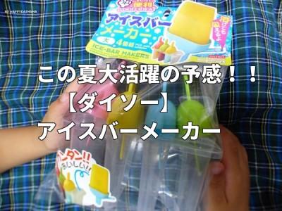 【ダイソー】好きなジュースでアイスができちゃう!アイスバーメーカー!