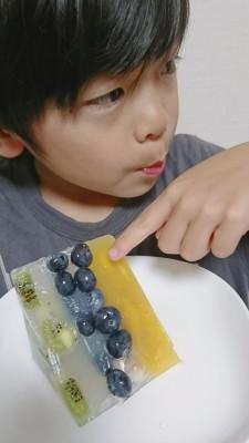 019★牛乳パックで簡単テリーヌ★
