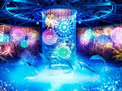 【アクアパーク品川】室内花火×イルカショーで涼しいくてオススメ!
