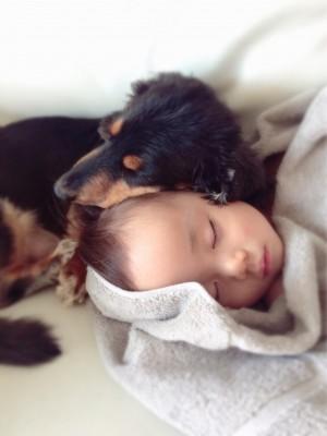 ペットを飼うということ。育児との両立。妊娠出産時のアドバイス。