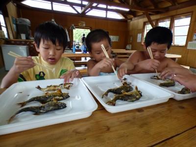 【食育】自分でつかみ取りした魚を食べる!何を感じる?@南郷水産センター