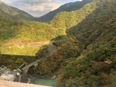紅葉と自然を求め、小河内ダムへ行ってきました。