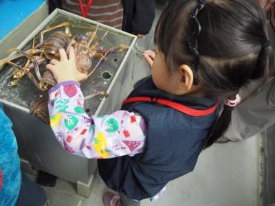 【おでかけ】水族館の裏側ツアーを体験!