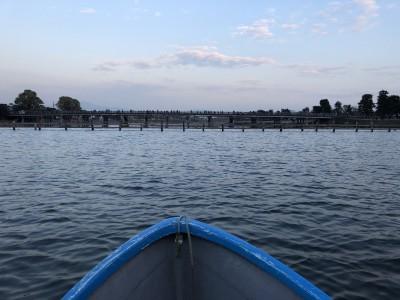 【紅葉狩り】モンキーパークと手漕ぎボート!子どもと楽しむ嵐山【京都】