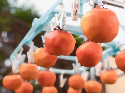 【こどもと料理】超簡単!皮をむいて干すだけ!親子で干し柿作りに挑戦!