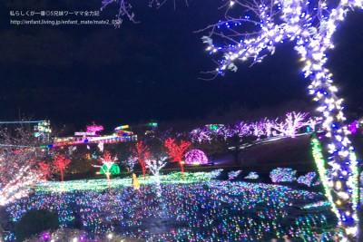 【子連れイルミ】伊豆のグランパル公園がすごい!出産前最後の家族伊豆旅行