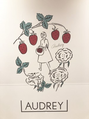 【バレンタイン】梅田阪急大人気のオードリー買えました!ラングドシャ
