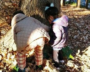 絶叫しハマる子どもたち!冬の公園で虫探し!落ち葉クッション