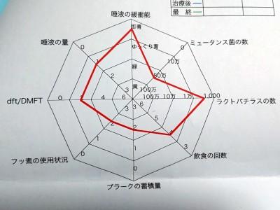 yobosika2