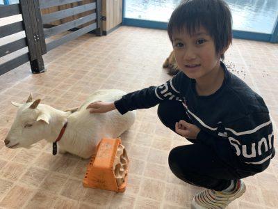 千葉市の室内型動物園で快適に癒されました!笑