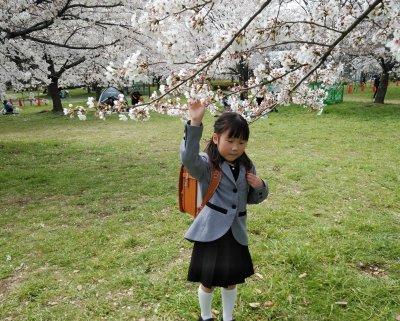 桜とランドセル・舎人公園で撮影会に参加してきました!