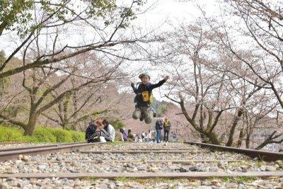 満開の桜と一緒に!京都のオススメ桜撮影スポット【蹴上インクライン】