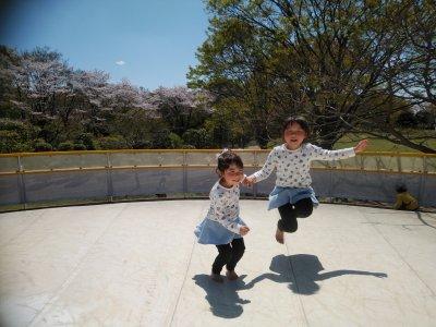 GWのお出かけに♪茨城県自然博物館に行ってきた!