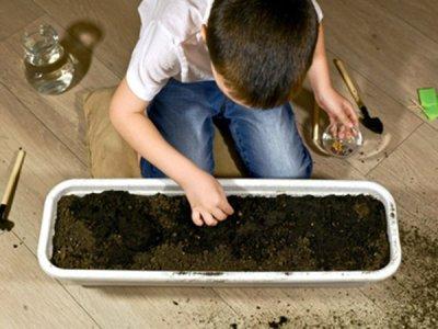 子どもの興味を引き出す方法は大人の工夫次第!