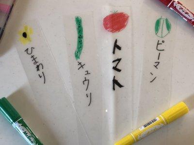 【家庭菜園】あるものを使ってラベルを手作りして子どもと楽しもう!!