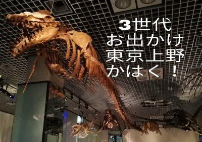 【3世代東京おでかけ】雨でもOK!一日中楽しく学べる「かはく」常設展!