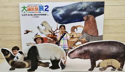 【科博】大哺乳類展2は6月16日まで!混雑状況