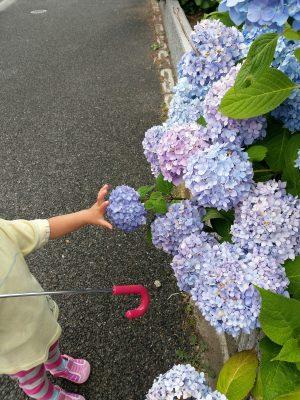 子供と楽しむ!雨の日の過ごし方