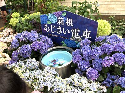 車で箱根へ行くなら、駐車場は「鈴廣のパーク&ライド」がおすすめ!