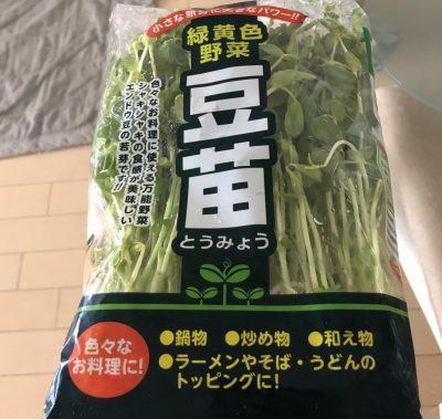 食育にも☆栄養満点のお助け食材【豆苗】の栽培記録