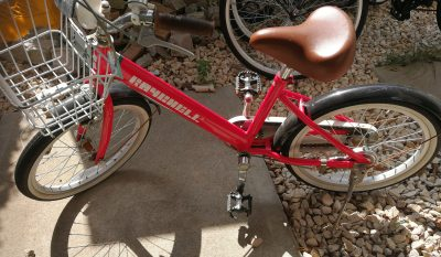 自転車に乗らなくなった娘。その理由に涙…