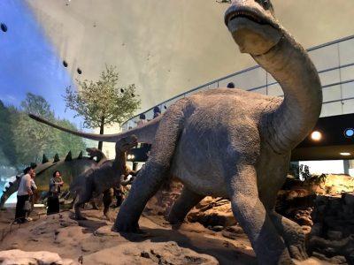 大迫力!福井県立恐竜博物館に行ってきた!